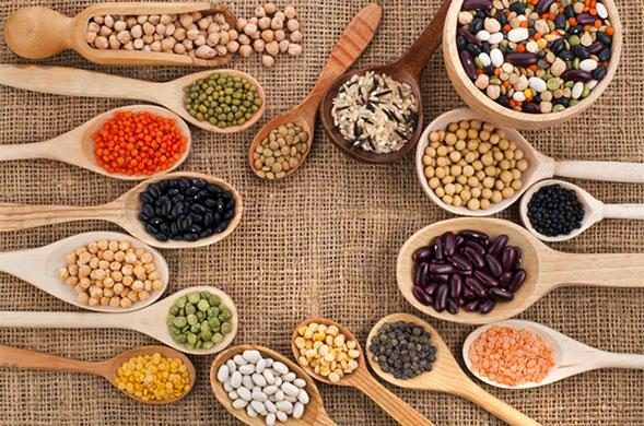 protéines végétales-santécool