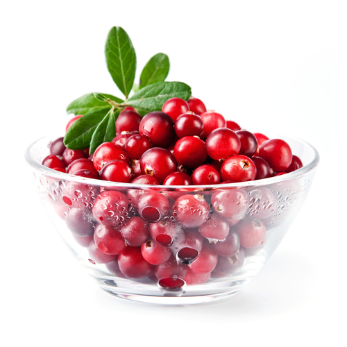 cranberry-infection-urinaire-santecool