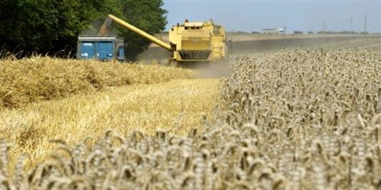 pesticides-biodiversité-santecool