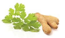 recette-coriandre-gigembre-tartare-santecool