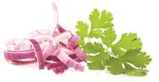 recette-oignon-coriandre-santecool