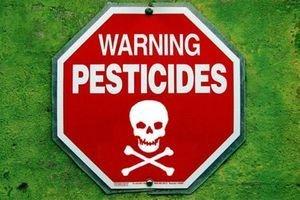 Pesticides-la-santé-moins-importante-que-l-économie-santecool