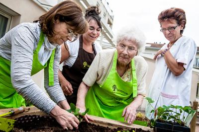 Découvrez-les-jardins-thérapeutiques-santecool