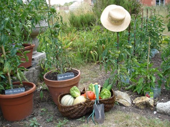 Et-si-vous-vous-mettiez-à-la-jardinothérapie-santecool