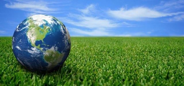 Les-enjeux-de-la-gestion-durable-des-forêts-et-de-la-lutte-contre-le-braconnage-santecool