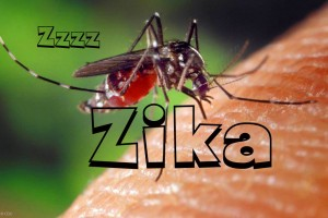 comprenrde-le-virus-zika-santecool