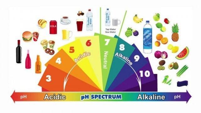 Comment-réduire-l-acidité-de-notre-organisme-santecool