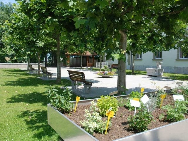 1er jardin th rapeutique en psychiatrie santecool for Jardin therapeutique