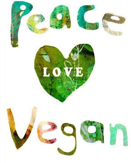 Pourquoi-devenir-vegan-santecool