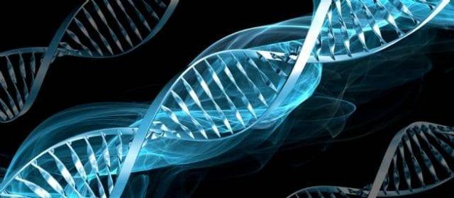 Découverte-d-un-nouveau-système-de-réparation-de-l-ADN-santecool