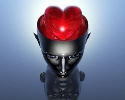 Les-bases-cérébrales-des-émotions-varient-dans-le-temps-santecool