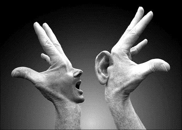 Surdités héréditaires : quand oreille et cerveau auditif sont tous deux touchés