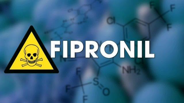 fipronil-lanses-na-pas-le-droit-de-conclure-a-labsence-de-risque-santecool