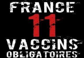 Les Professeurs Luc Montagnier, Prix Nobel de Médecine et Henri Joyeux, Prix international de cancérologie, résument en 7 points leur conférence de presse commune du 7 novembre 2017 sur les vaccins.
