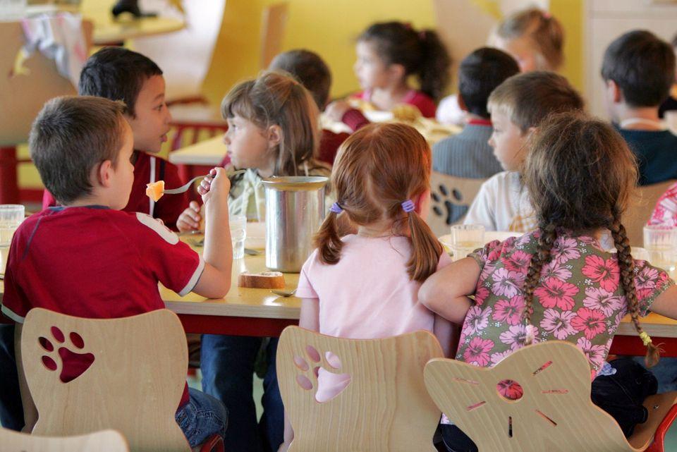 Viande et produits laitiers : Greenpeace dénonce l'influence des lobbies sur l'assiette de nos enfants