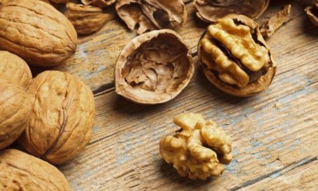 Les noix, des alliées pour la santé