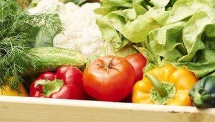 Des fruits et légumes frais sans résidu de pesticides chez Casino