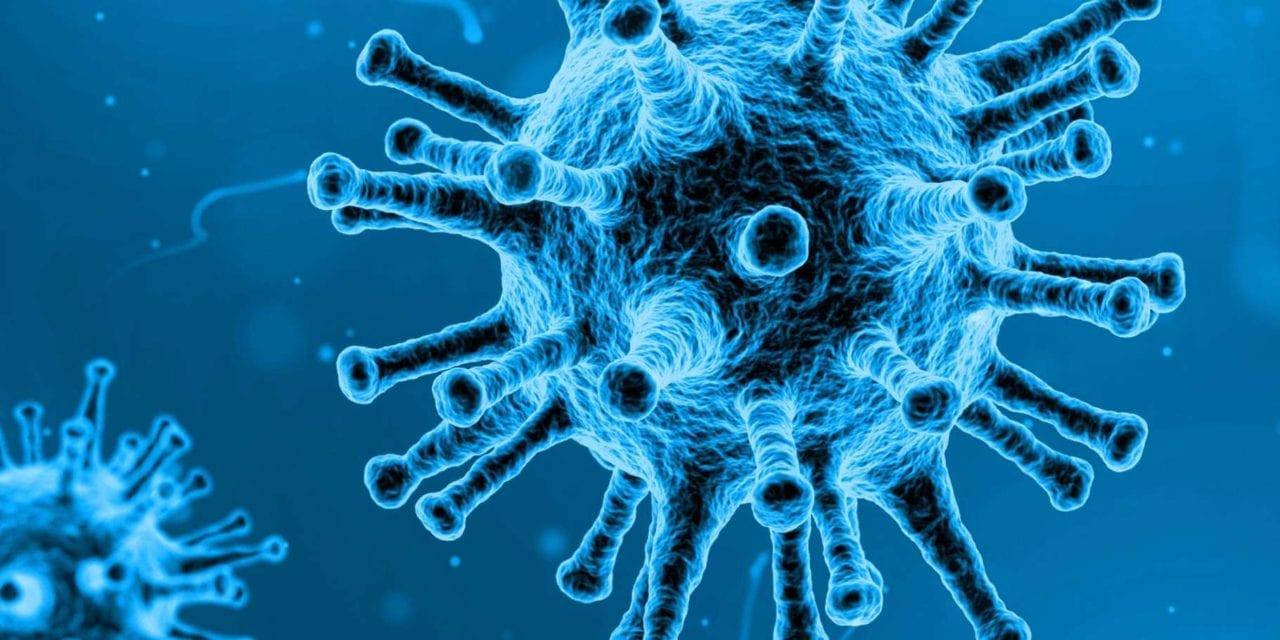 Virus dans l'alimentation : un nouveau mandat national de référence pour le Laboratoire de sécurité des aliments de l'Anses