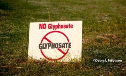 Glyphosate : 30 organisations lancent une pétition pour son interdiction