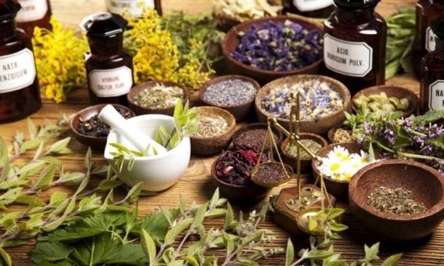 Plantes médicinales, fini le monopole des pharmacies