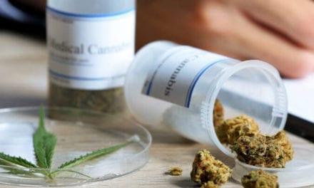 Du cannabis thérapeutique pour les malades souffrant d'un cancer
