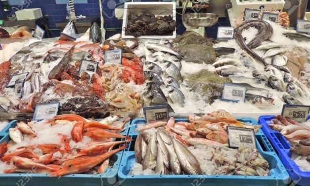 Pêche durable : la grande distribution l'ignore