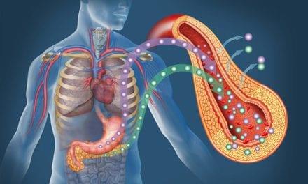 Diabète de type 2, une piste pour restaurer le pancréas
