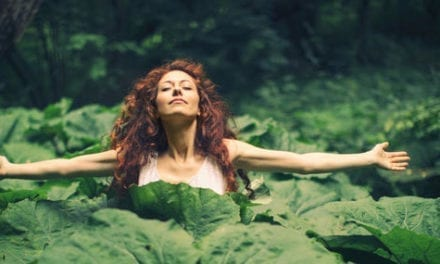Pourquoi la Nature nous soigne et nous rend plus heureux