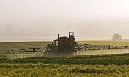 Pesticide chlorpyrifos, stop à ce perturbateur endocrinien !