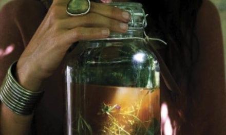 Alchimie Végétale, Rituels et soins pour l'âme et le corps