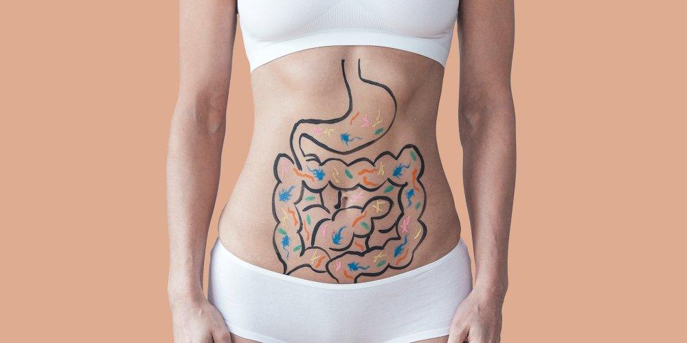 Le microbiote intestinal, un allié santé pour toute la vie