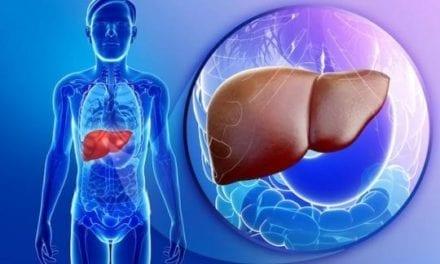 """Les probiotiques une solution contre le syndrome du """"foie gras"""""""