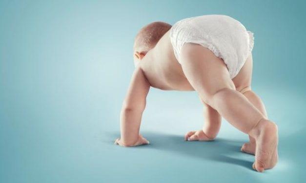 Restriction des substances chimiques dans les couches pour bébés