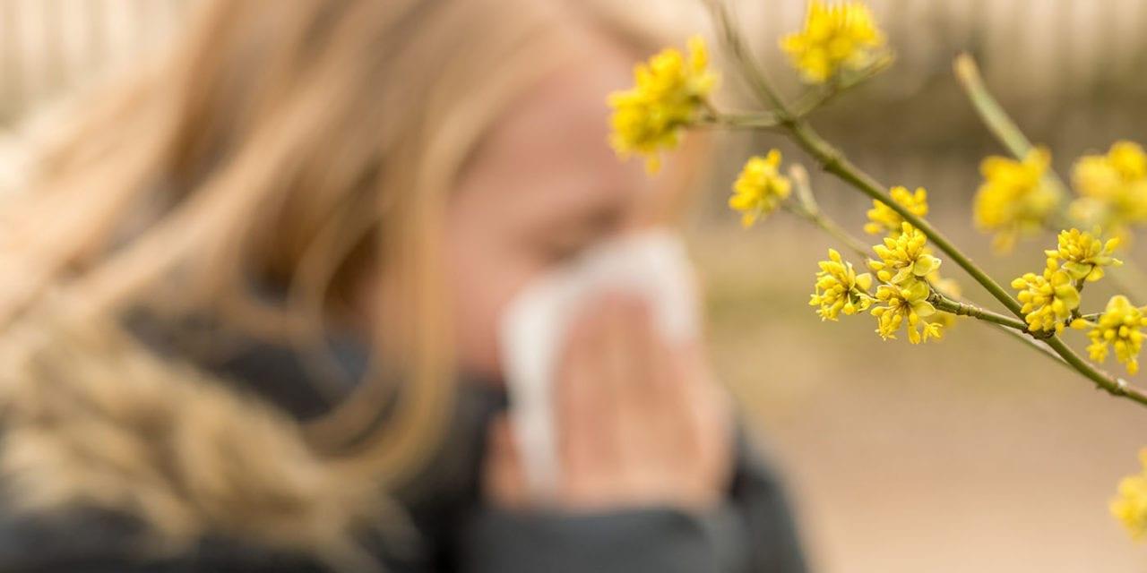 Alerte aux pollens et moisissures