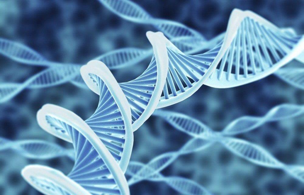Grand espoir pour les maladies héréditaires rares