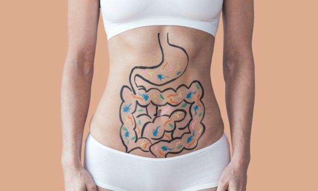 Contrôler son poids et son appétit avec les probiotiques