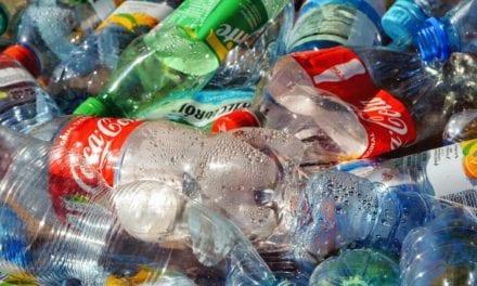 Le Sénat a adopté à l'unanimité une proposition de loi contre le plastique